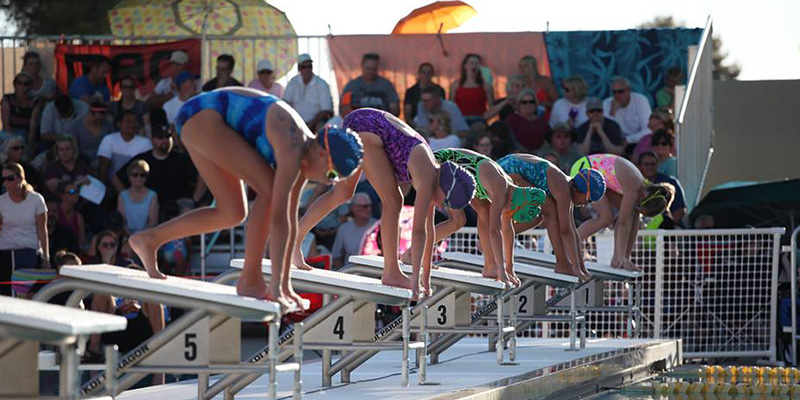 Swim Team City of Mesa