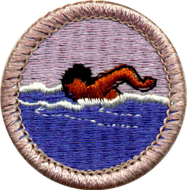 Want To Work On Those Eagle Required Merit Badges